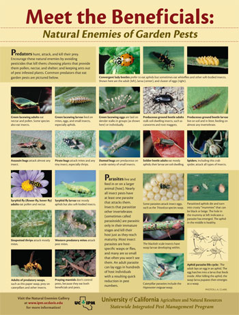 Poster: Meet the Beneficials, Natural Enemies of Garden Pests