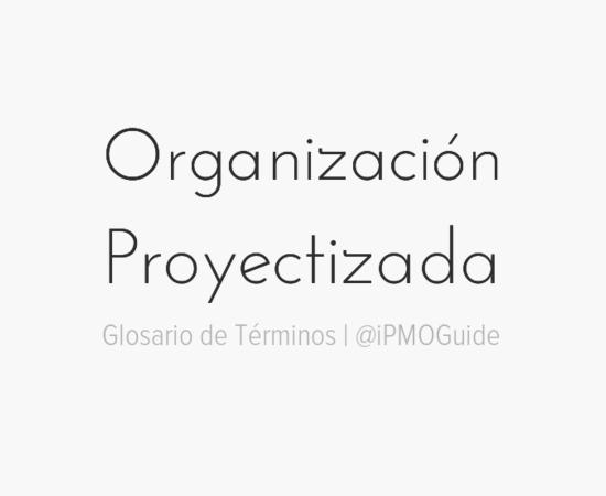 Organización Proyectizada