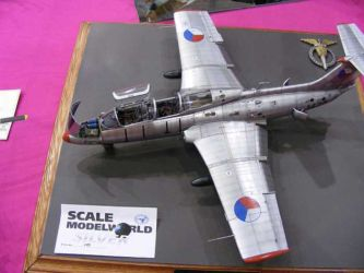 Scale ModelWorld 2010 competition photo by Tony Horton (20)
