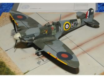 IPMS Poland Trophy - Supermarine Spitfire Mk.IIb by Otto Burkhard Photo Photo Ashley Keates