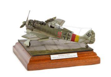 Class 05 Gold - Focke Wulf Fw 190A-8 by Spencer Pollard