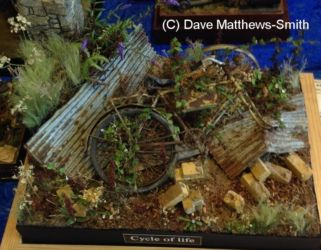 Diorama Competition Entry - Photo Dave Matthews-Smith (1)