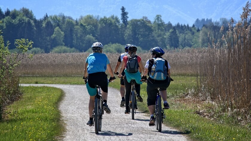 Rowerzyści na trasie wśród łąk