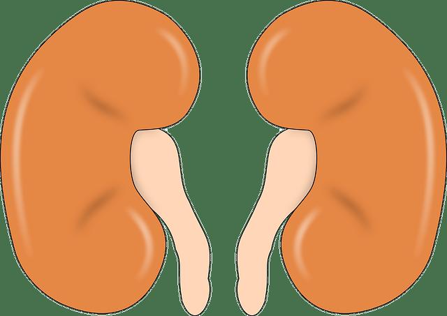 Tanda-Tanda Gagal Ginjal Akut