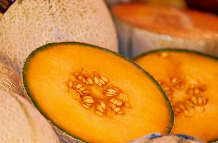 Berbagai Manfaat Winter Melon untuk Kesehatan