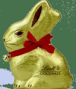 tavşan1