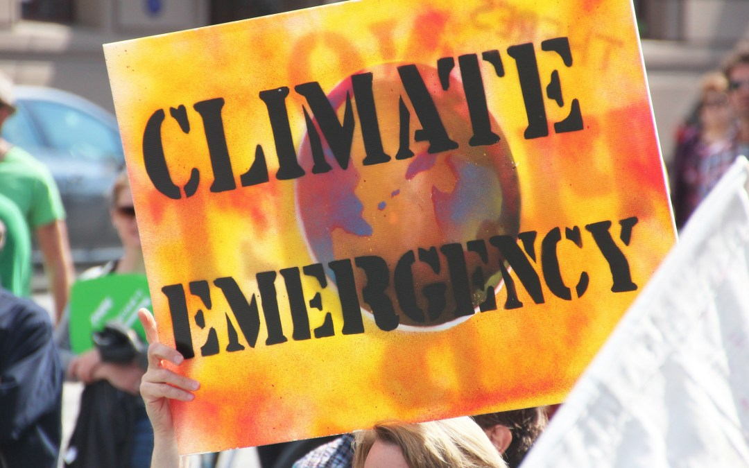 To Stop Climate Change, Don't Just Cut Carbon. Redistribute Wealth.
