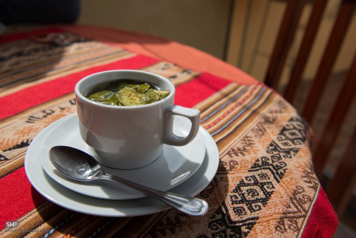 coca-tea-food-drugs