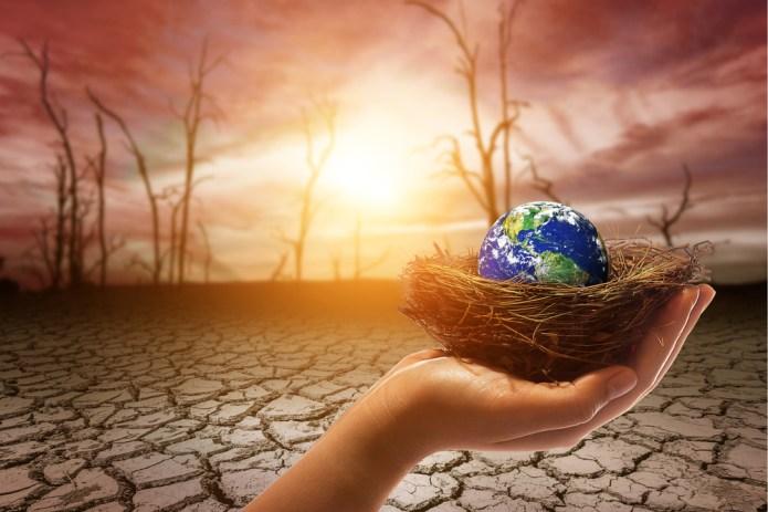 globe-nest-drought-hand-dystopia