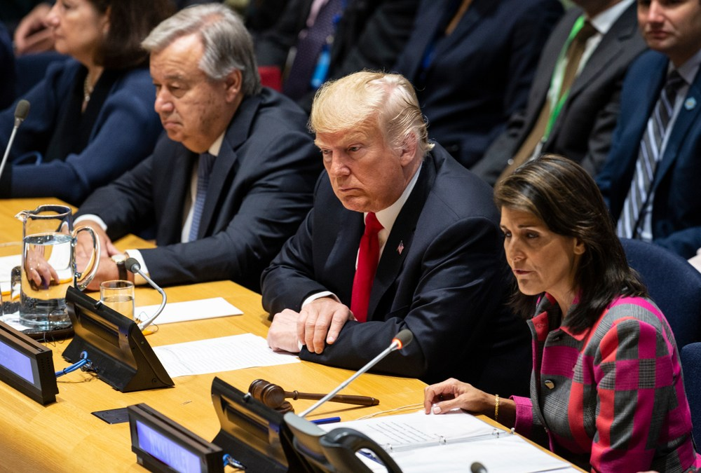 Phyllis Bennis on What We Can Expect From Trump-led Security Council Meeting