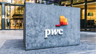 pwc-price-waterhouse-cooper-mckinsey-and-company-isabel-dos-santos