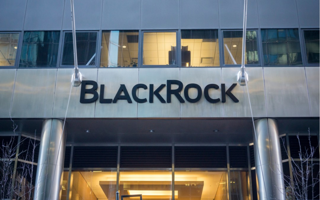 A Virtual Assembly Takes On BlackRock's Big Problem