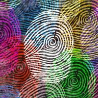 census-fingerprints