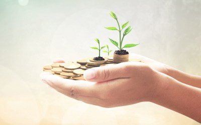 Human hands save holding golden coin stack and small tree on blurred green nature background