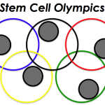 The Stem Cell Olympics: a fun way to understand different kinds of stem cells