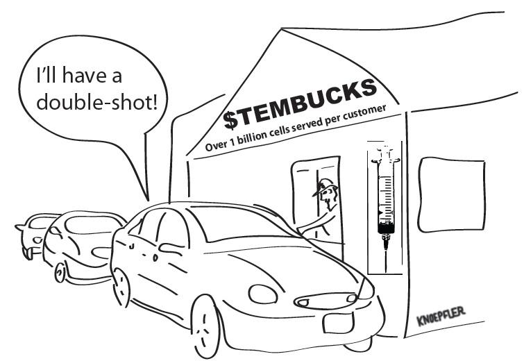 Stem cell cartoon, stembucks.