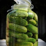 In a pickle over STAP stem cells: top 5 reasons for skepticism