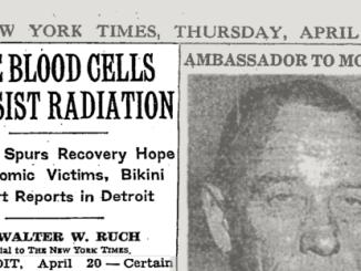 NY Times stem cells