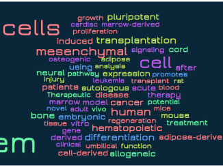 word cloud stem cell15