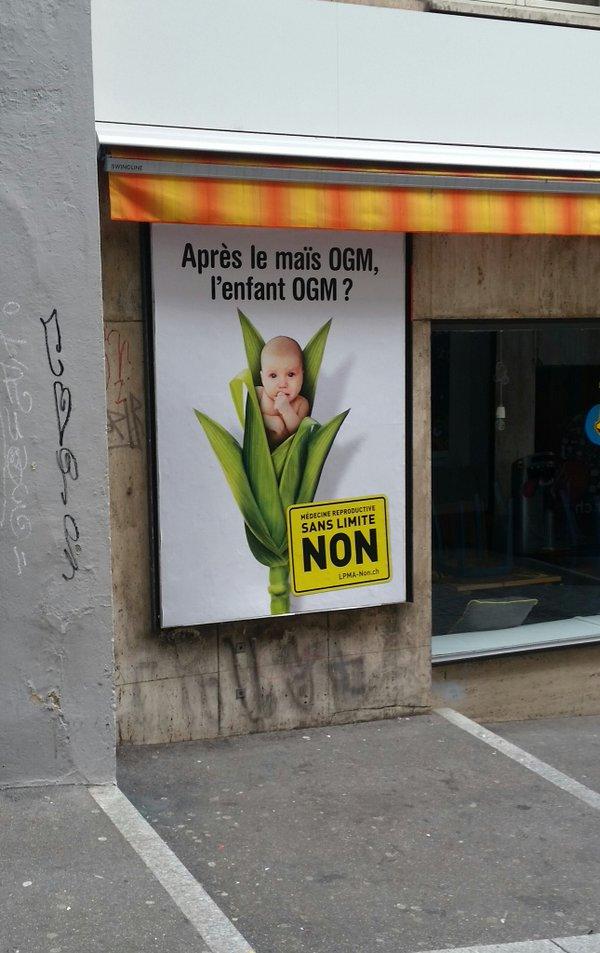 GMO-Corn-GMO-People