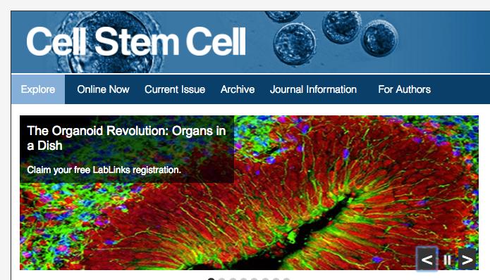 Cell-Stem-Cell