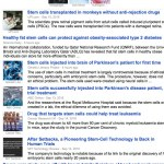 Top 10 Google Stem Cell News Stories: Perspectives