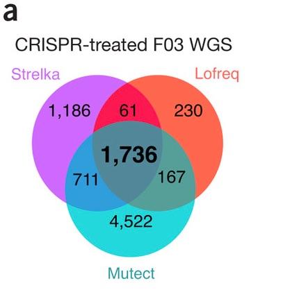 CRISPR-mutations-Figure-1a