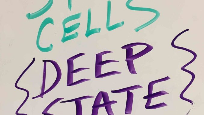 Predatory clinics push stem cell secret society, deep state