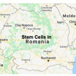 Romania fines 5 stem cell groups for alleged 'dirty practices'