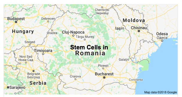 Stem Sure Solutions and CBC Laboratories (Stem Sure Solutions)