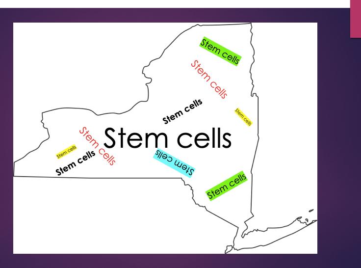 NY-stem-cells