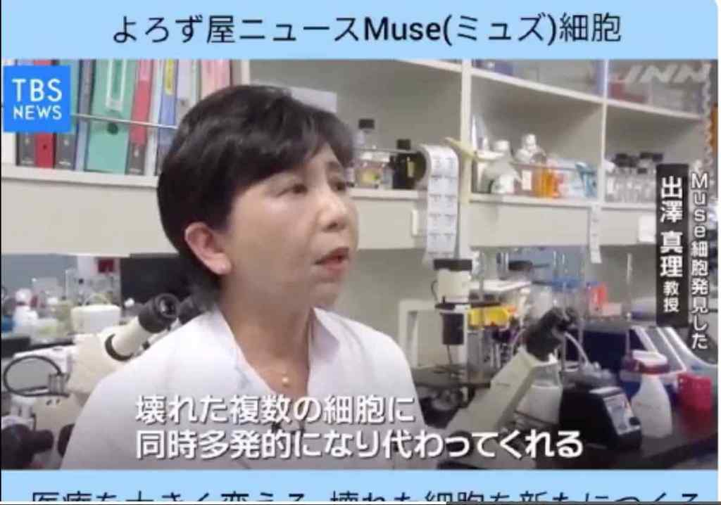 Professor-Mari-Dezawa-talking-about-MUSE-cells-on-national-TV-in-Japan.-Screenshot.