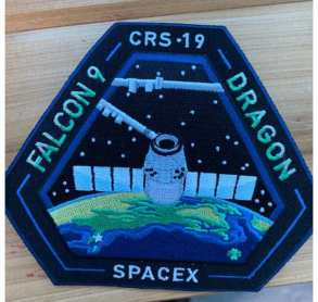 NASA stem cells in space project patch
