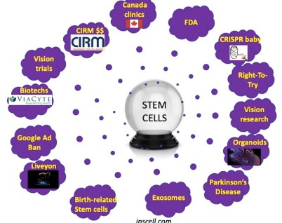 The-Niche-stem-cell-predictions-2020