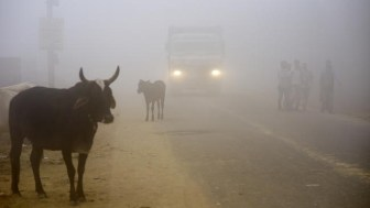 India-Pakistan - Deadly Smog