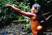 Native Waorani hunter-gatherer in Yasuni. / Credit:Save Americas Forests