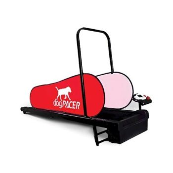 Best Large Dog Treadmill