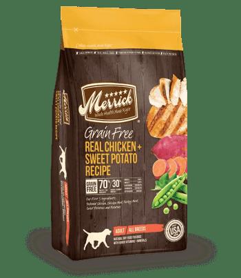 English Setter Best Dog Food