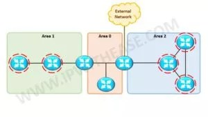 ospf-router-types-1