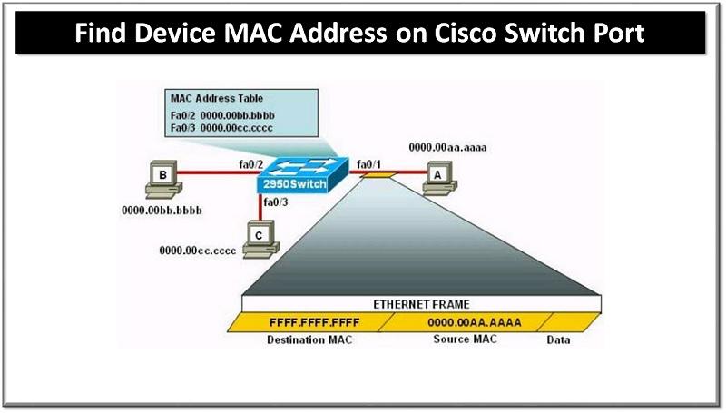 Find Device Mac Address on Cisco Switch Port