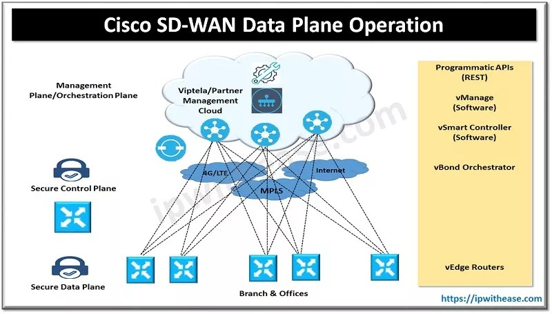 cisco sd wan data plane operation