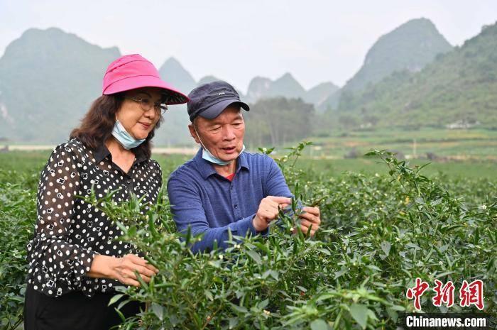 日本折叠世界:1000万年轻人的囚笼生活