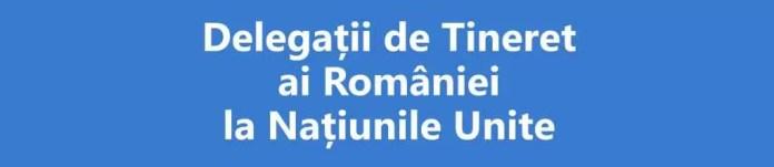 Siglă Delegații de Tineret ai României la ONU