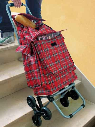 sacosa-sau-carucior-trolley-pentru-cumparaturi--care-urca-scarile-110000