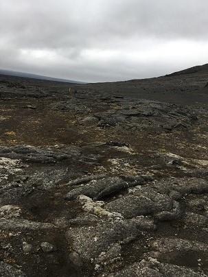 The terrain!