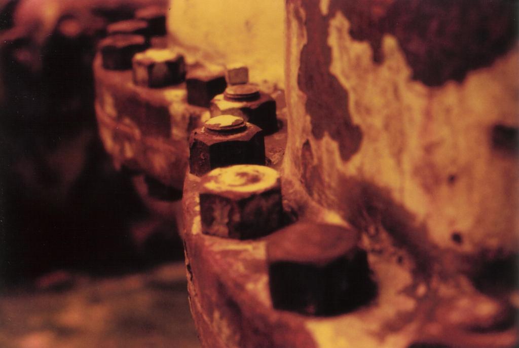 35mm Redscale por Iram Ortega
