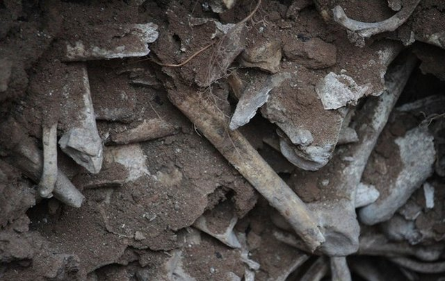 Mass grave discovered in Tabriz requires UN probe into Iran's 1988 massacre
