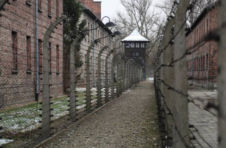 no amount of bracing could have prepared me for a visit to Auschwitz