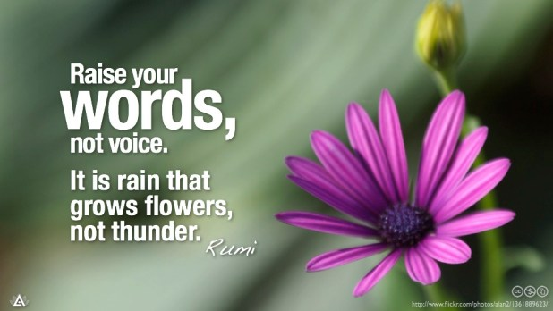 raise your words not your voice. it is rain that grows flowers not thunder. rumi