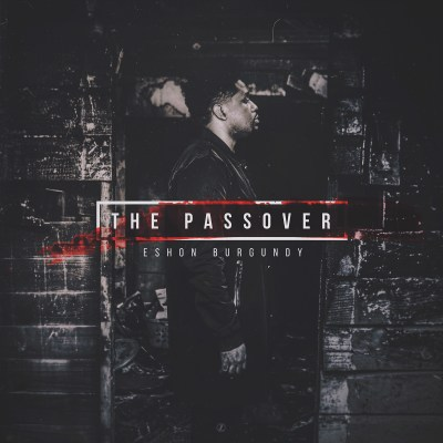 the Passover album art
